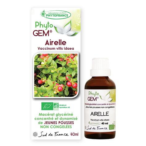 airelle - phytogem - gemmotherapie - phytofrance