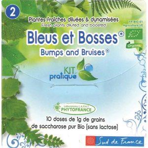 bleus-et-bosses-dosettes-de-plantes