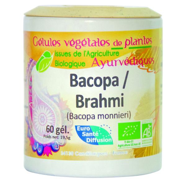 brahmi-bacopa-gelules-de-plantes-ayurvedique