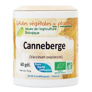 canneberge-bio
