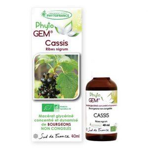cassis - phytogem - gemmotherapie - phytofrance
