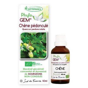 chene pedoncule - phytogem - gemmotherapie - phytofrance