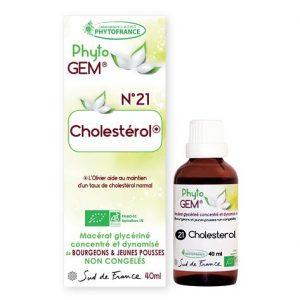 cholesterol - phytogem - gemmotherapie - phytofrance