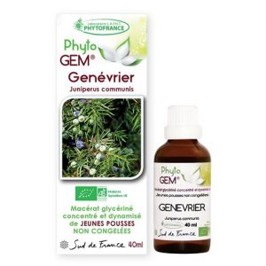 genevrier - phytogem - gemmotherapie - phytofrance