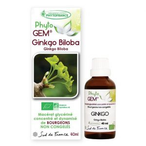 ginkgo - phytogem - gemmotherapie - phytofrance