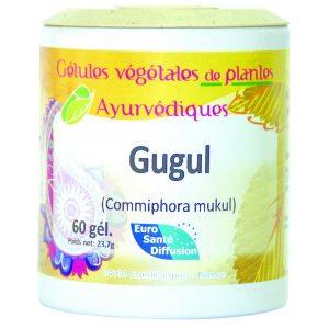 gugul-oliban-gelules-de-plantes-ayurvediques