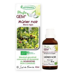 murier noir - phytogem - gemmotherapie - phytofrance