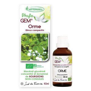 orme - phytogem - gemmotherapie - phytofrance