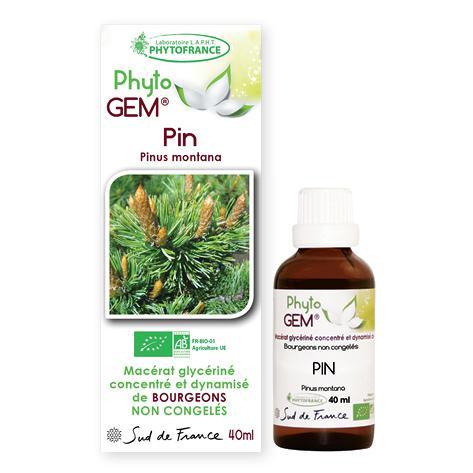 pin - phytogem - gemmotherapie - phytofrance