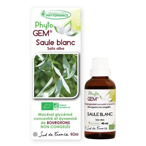 saule blanc - phytogem - gemmotherapie - phytofrance