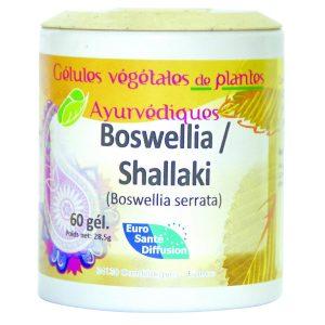 shallaki-boswellia-serata-gelules-de-plantes-ayurvediques