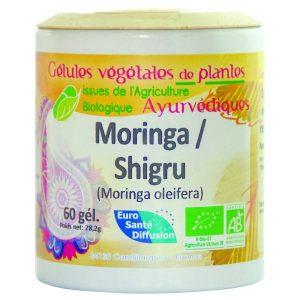 shigru-moringa-concentre-de-vitamines-mineraux-proteines