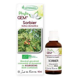 sorbier - phytogem - gemmotherapie - phytofrance