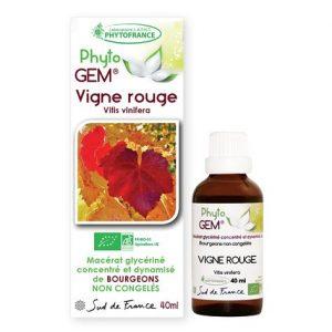 vigne rouge - phytogem - gemmotherapie - phytofrance