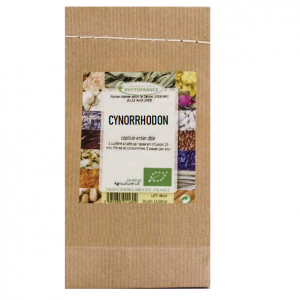 plante-cynorrhodon-bio