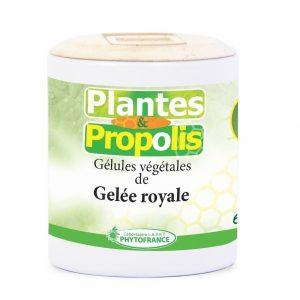 gelules-de-gelee-royale-plante-et-propolis